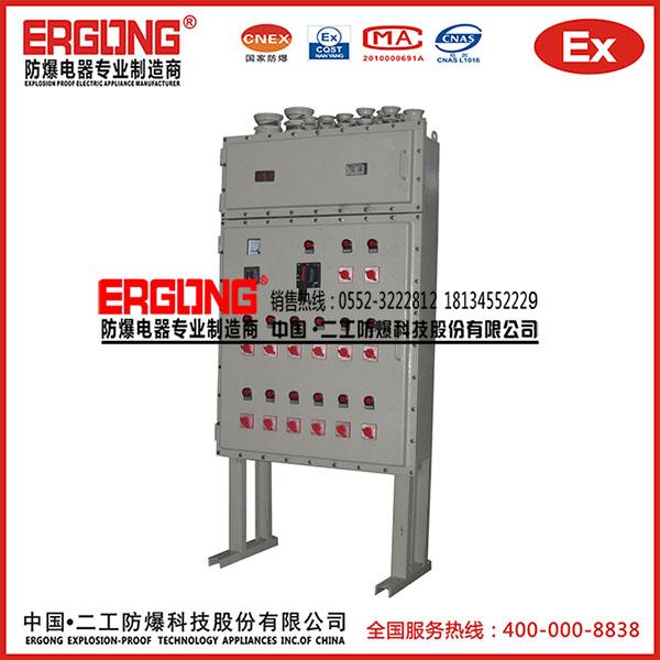 防爆配电箱(防护等级IP65)