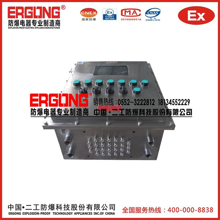 防爆配电箱(316L海上平台使用)