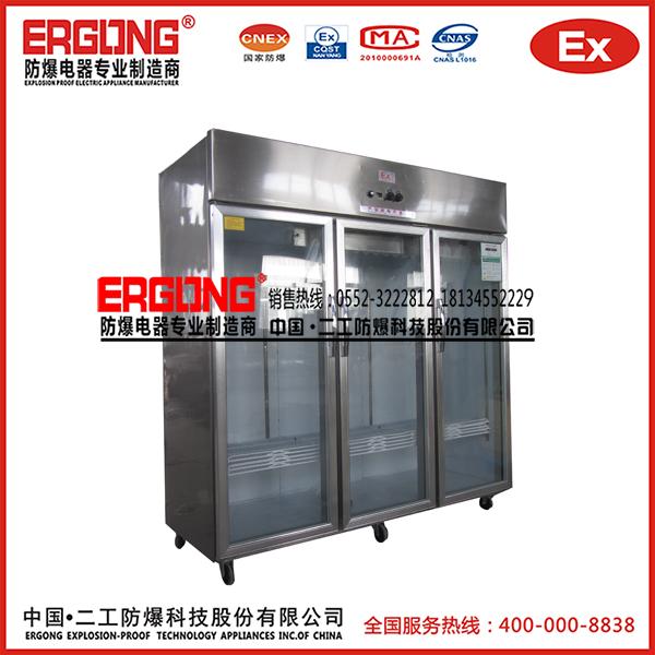 防爆冰箱(大容量)